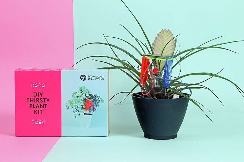 The Thirsty Plant DIY Kit