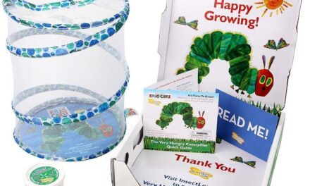 Insect Lore and the World of Eric Carle™ Release New Educational Sets